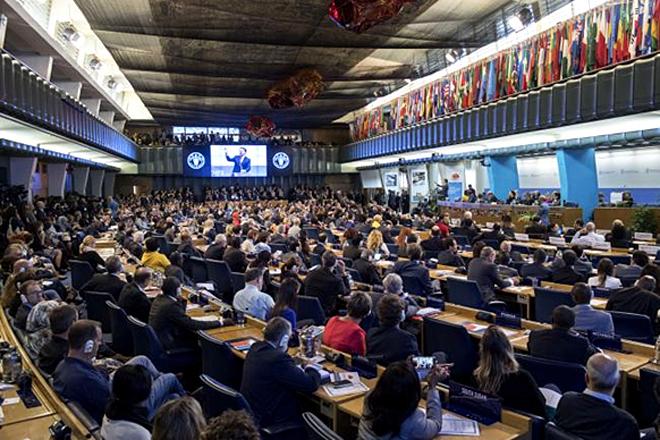 """Giornata Mondiale dell'Alimentazione - Il premier Renzi alla cerimonia della FAO: """"La sicurezza alimentare in cima all'agenda del 2017"""""""
