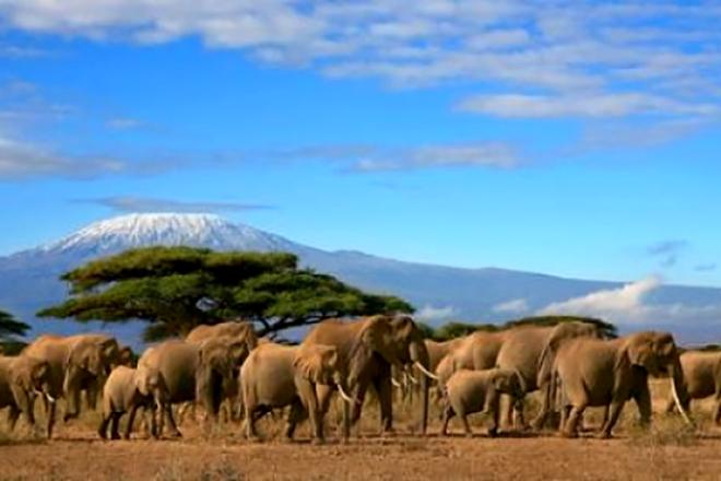 Amboseli - Così il Covid-19 ha messo in ginocchio la sostenibilità del turismo africano
