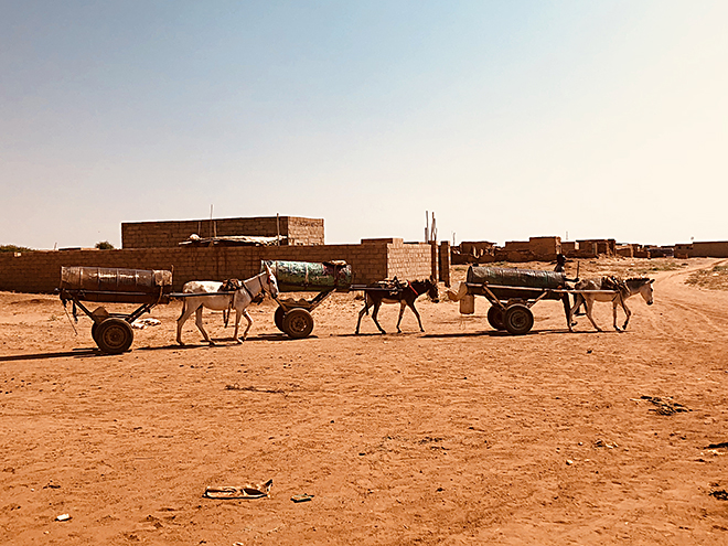 """Aics Khartoum - A Mayo, a 20 km dal Khartoum, l'acqua viene trasportata dai cosidetti """"carri"""" guidati da ragazzi che, dopo averlo riempito dal pozzo, la vendono alle famiglie. 2 taniche da 5 litri costano 10 centesimi di euro. Un costo notevole per le famiglie con reddito mensile medio di circa 3 euro."""