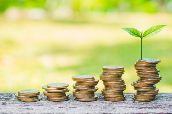 Esg finance - These are the new environmental, social and governance sustainability criteria for investments. Can they be an opportunity for developing economies? Performance monitoring, transparency, and authoritarian policies can undermine these investments