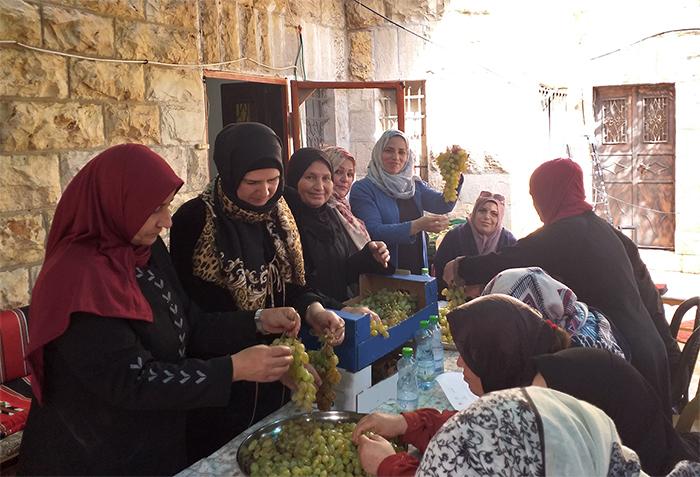 8 Marzo - Giornata internazionale della donna - Le donne del progetto GEMAISA, sostenuta dall'Agenzia italiana per la cooperazione allo sviluppo,  nei paesi dell'Africa del Nord e Medio Oriente